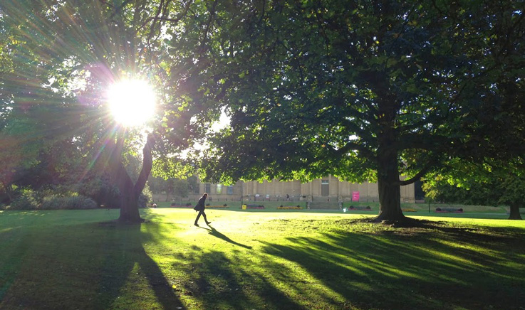 Invest in parks and green spaces to boost wellbeing across the city