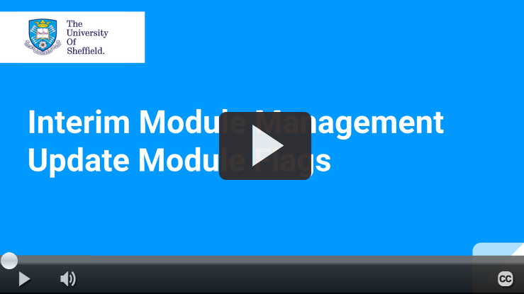 Play IMM Module Flags video