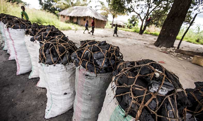 Sacks of charcoal in Mozambique