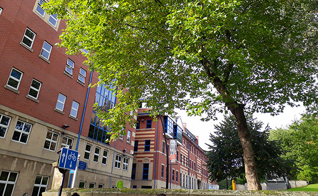 Journalism Studies building at 9 Mappin Street, viewed side on with trees in the foreground