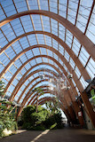 The Winter Gardens: Sheffield biggest public indoor space