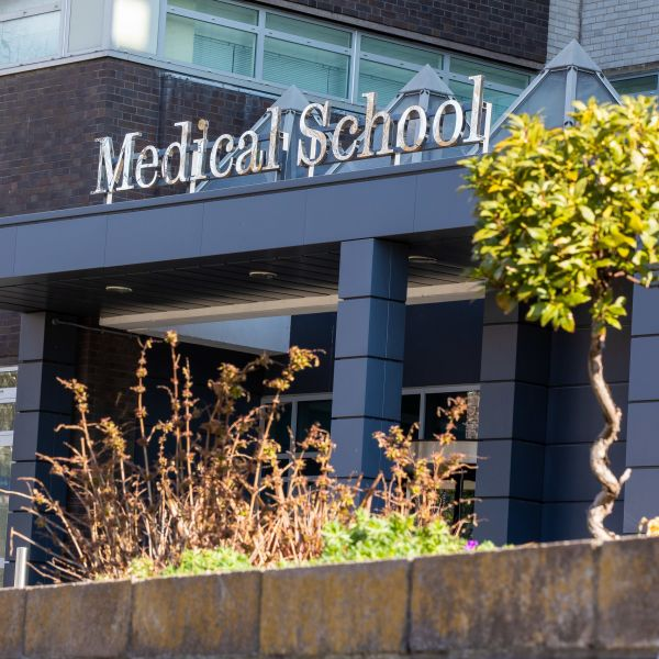 The Medical School on a sunny day. Foliage in front.