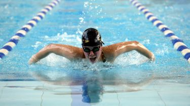 Swimmer swimming butterfly stroke