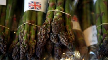 Sustainable food asparagus