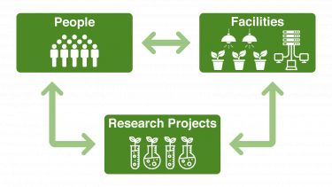 Plant production and protection: interactive triangle showing people, facilities and projects