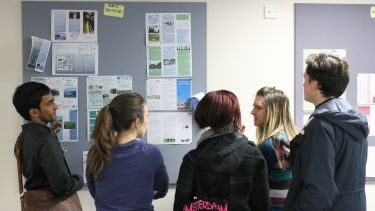 Students looking at a notice board