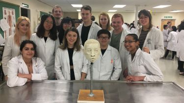 Human anatomy undergraduates in the lab