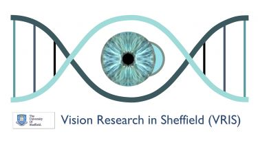 The logo for Vision Research in Sheffield.