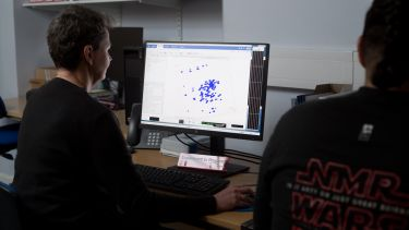Researchers analyse their NMR results
