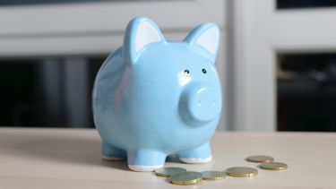 Image of a blue piggy bank and some coins