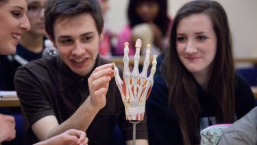 A group of medical students studying hand anatomy.