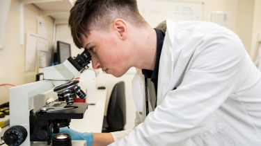A postgraduate student looking into a microscope