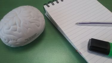 Brain and pens