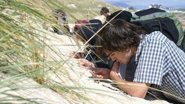 Students taking samples of sand on a beach
