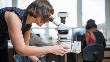 An archaeology postgraduate student uses a microscope.