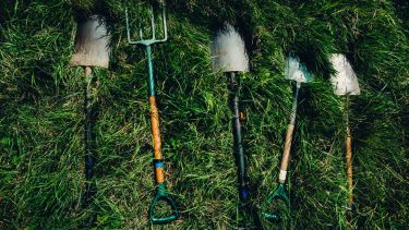 Shovels and garden forks lying on the grass