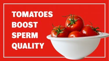 Tomatoes boost sperm quality header image