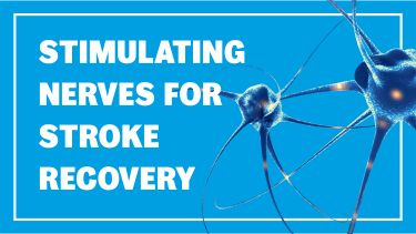 Stroke recovery header image