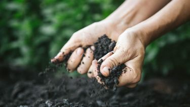 Picture of two hands picking up soil and letting it fall through their fingers