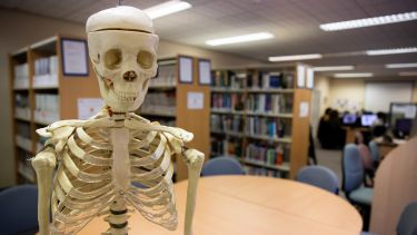 A skeleton in a library in the School of Health and Related Research.