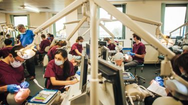 A room full of dental school students practicing dental care on mannequins.