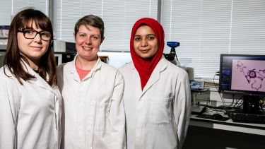 The Department of Infection, Immunity and Cardiovascular Disease lab. Three female students pose for the camera in lab coats.
