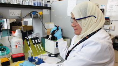 A researcher loads a sample with a pipette