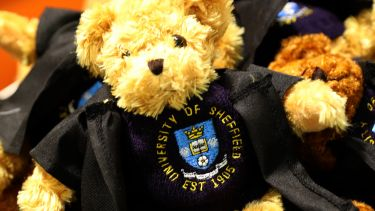 A graduation teddy bear souvenir. It is brown and wears a little jumper with the university logo on and graduation robes.