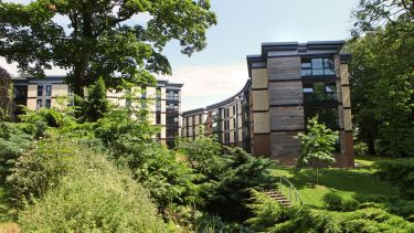 Accommodation at the University of Sheffield, photographed through a leafy green area.