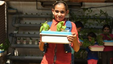 Young girl holding basil plants