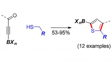 Synthesis of Heteroaromatic Boronic acid Derivatives