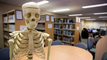 A skeleton in the School of Health and Related Research library.