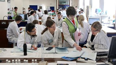 Students in an undergraduate teaching laboratory