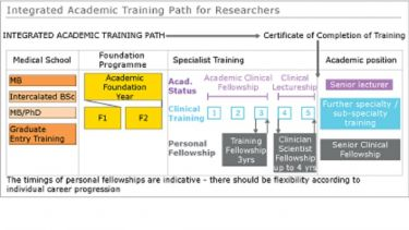 Integrated Academic Training Pathway diagram