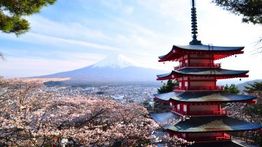 View of Pagoda with Mount fuji in background