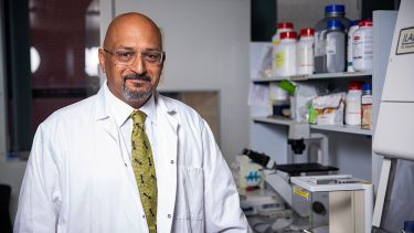 A photo of Professor Michael T Siva-Jothy in a laboratory - image