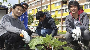 Students engaging in gardening outside a block of flats
