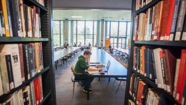 An image of a student studying in Western Bank Library