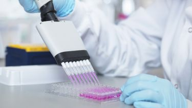 Scientist using multi-channel pipette to fill multiwell plate for analysis of antibodies