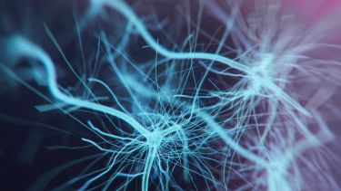 Neuron cells system - 3d rendered image of Neuron cell network on black background