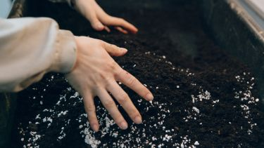 Picture of hands mixing soil together.