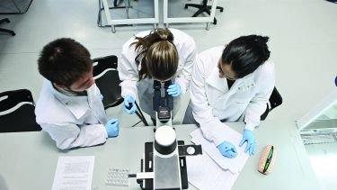 Group of science researchers wearing lab coats and looking down a microscope
