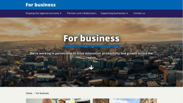 For business website homepage