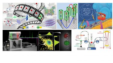 Research themes in the biophysical and photo physical group