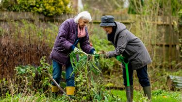 Two older women gardening. They are leaning in and looking at a plant.