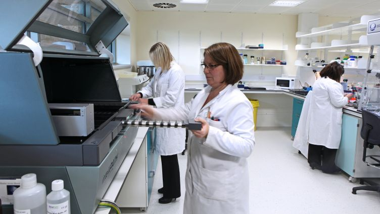 University of Sheffield Neuroscience Institute